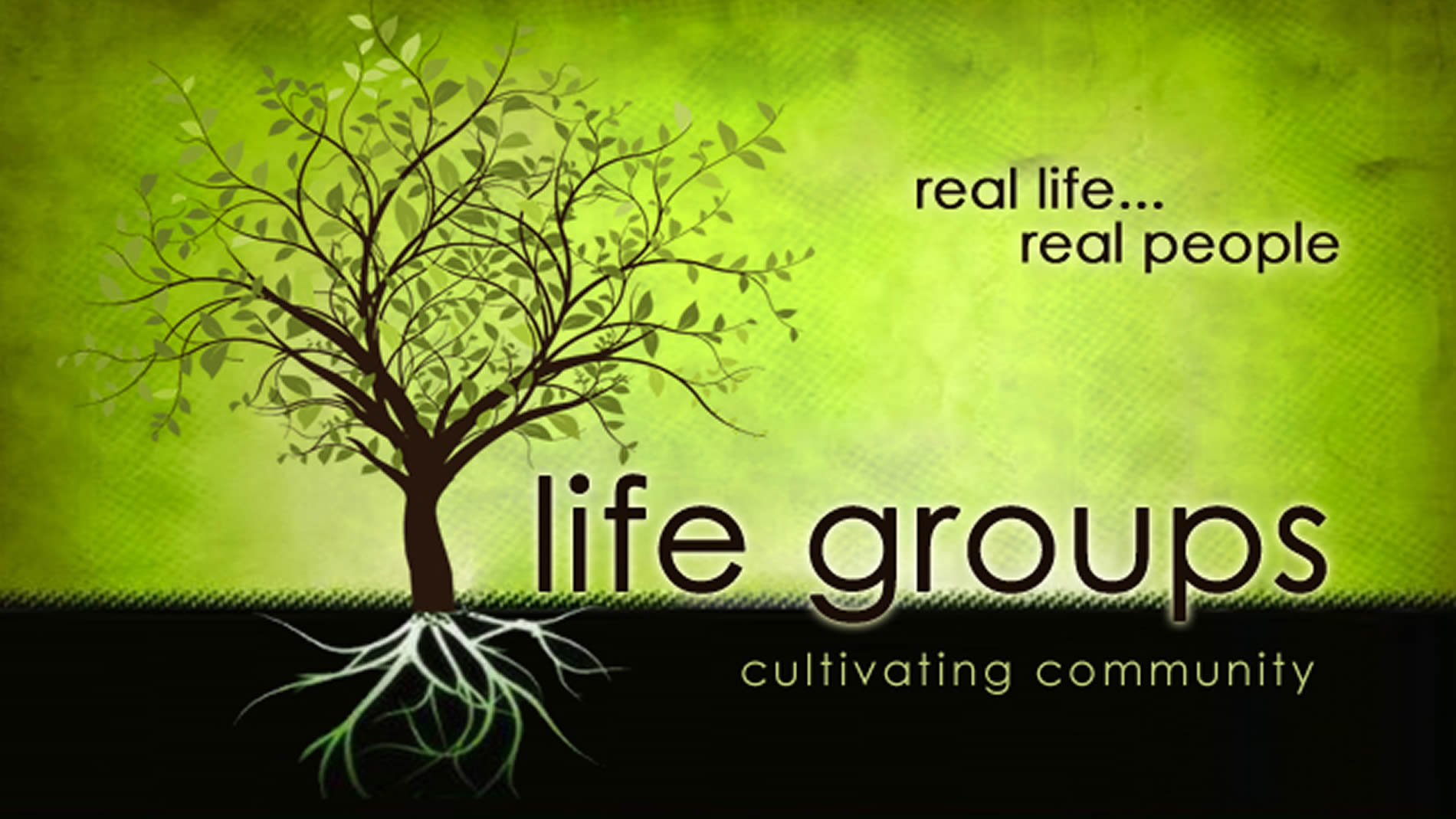 Life-Groups-image