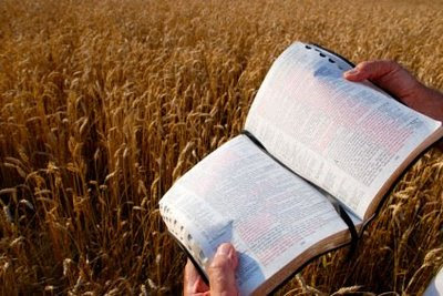 "Three ""Ps"" and the Central Importance of God's Word"